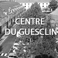 Niort - Centre Du Guesclin
